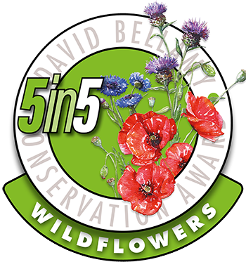 5in5-wildflowers-david-bellamy-award